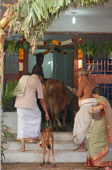 May madurai housewarming ceremony - Return gift for housewarming ceremony ...